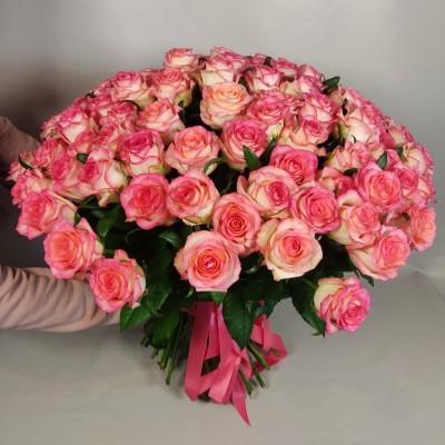 101 розовая роза Джумилия