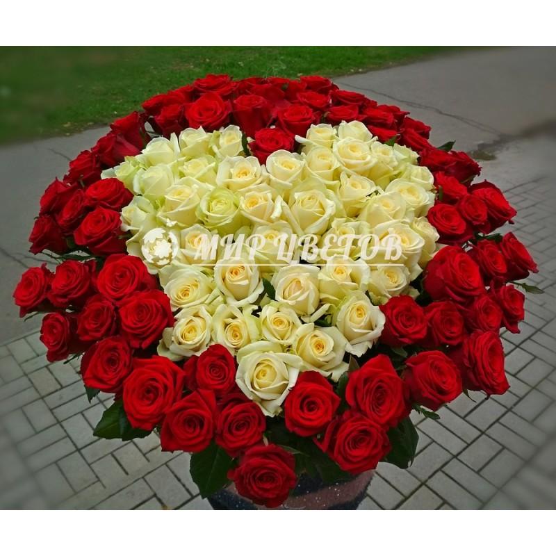 101 роза букет Сердце из роз