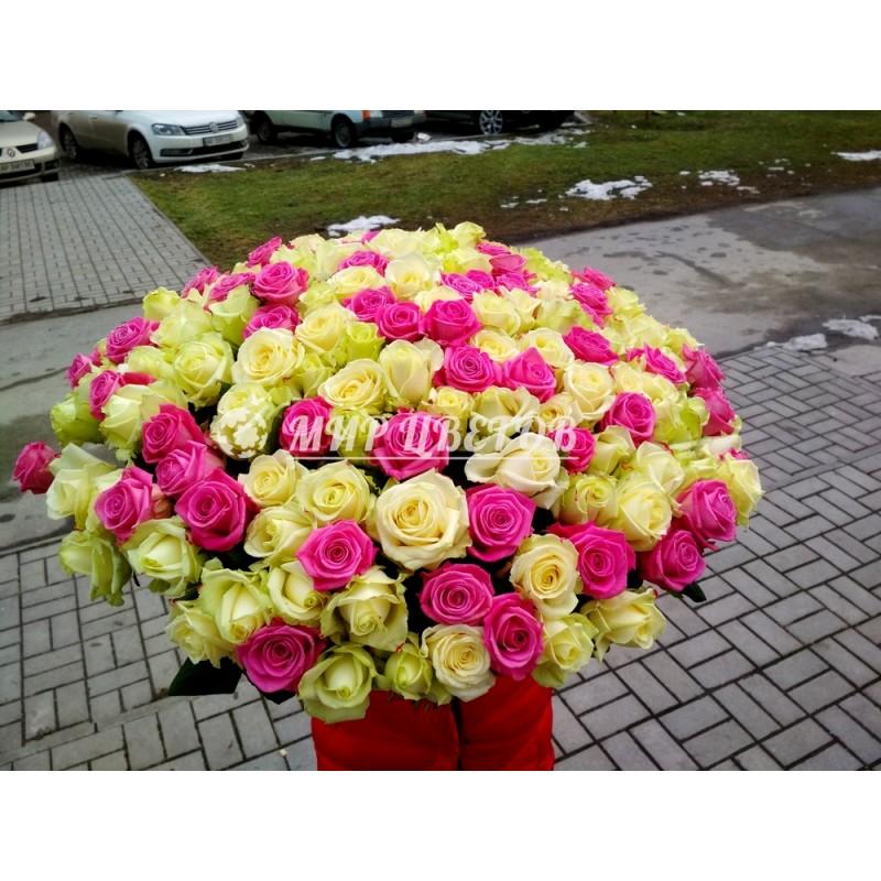 151 невероятная роза микс