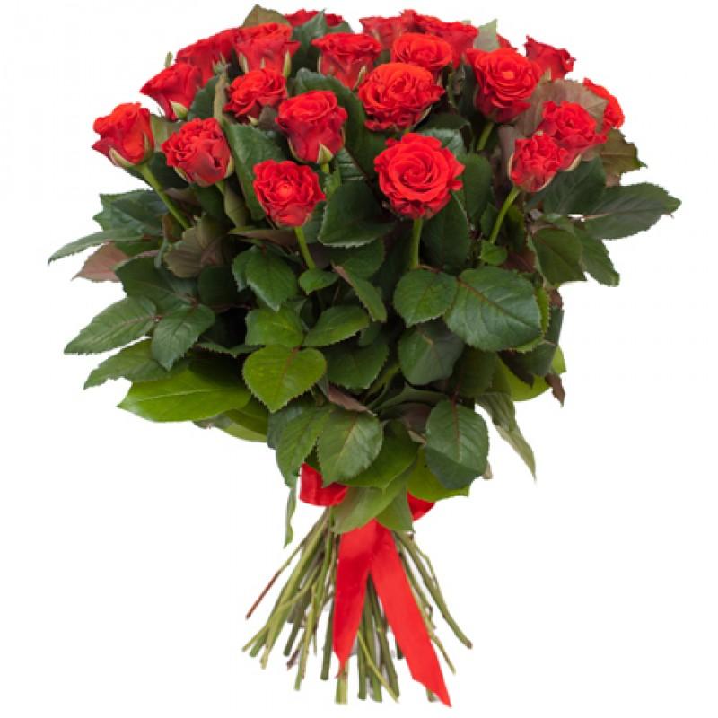 Букет 15 красных роз 50см