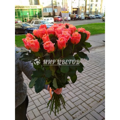 Букет 25 розовых роз