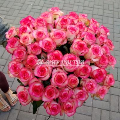 Букет 51 розовая роза Джумилия