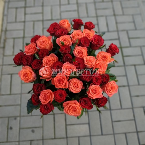 Букет 51 роза красная и коралловая микс