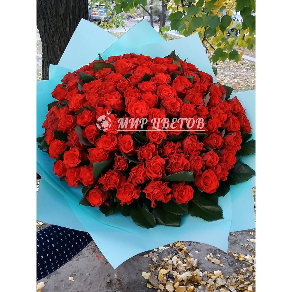101 красная роза Эльторо