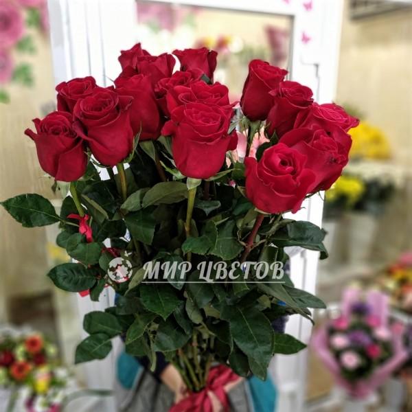 Голландские красные розы поштучно