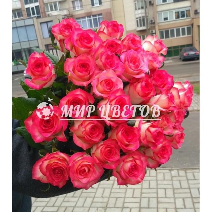 Букет 25 розово-белых необычных роз Джумилия