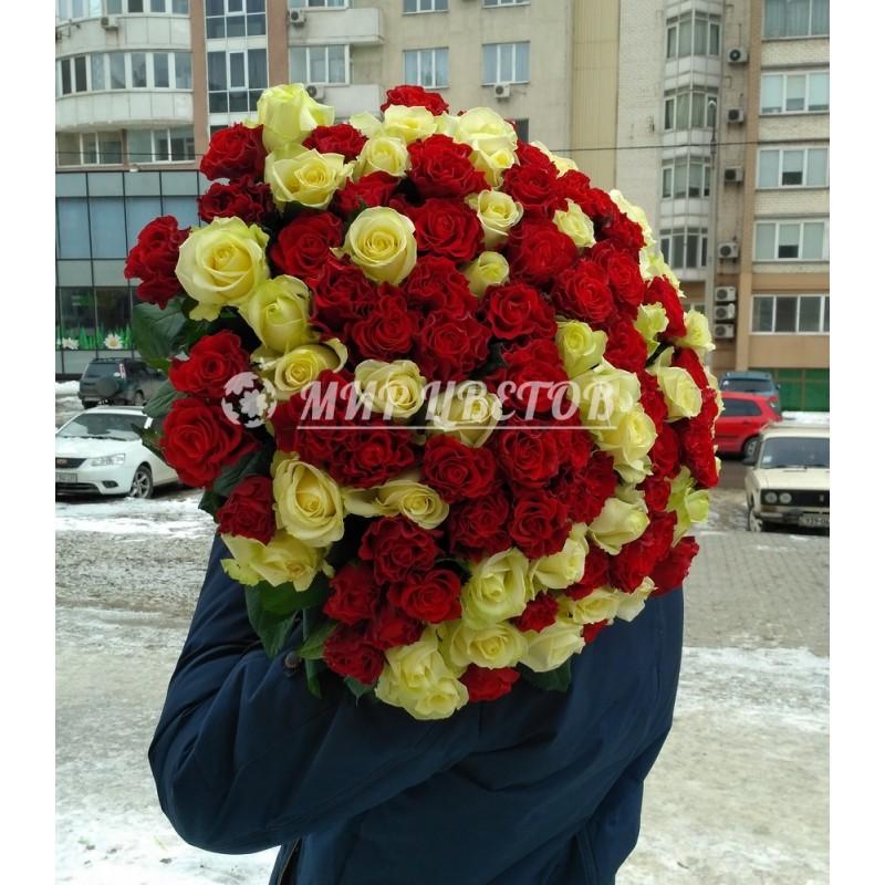 101 роза благородный микс