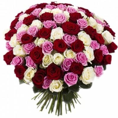 101 удивительная роза микс
