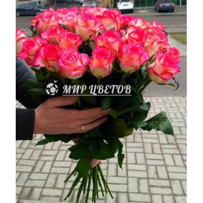 Букет 25 розово-белых необычных роз Джумилия 70см