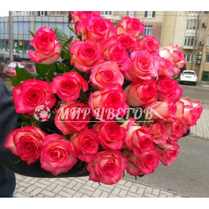 Букет 35 розово-белых необычных роз Джумилия