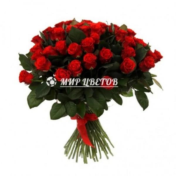 Букет 51 красная роза Эльторо